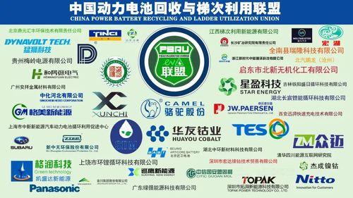 中国动力电池回收与利用联盟.jpg